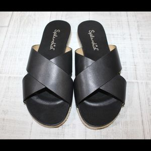 Splendid slides size 7.5
